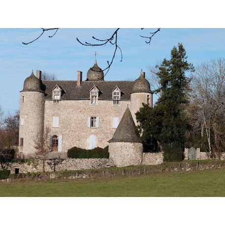 Замок Рекиста (Château de Réquista)