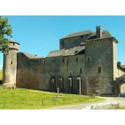 Замок де Бурин (Château des Bourines)