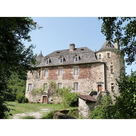 Замок в Сен-Жульен д'Эмпар  (Château de Saint-Julien d'Empare)
