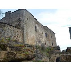 Замок в Кастельно-Пегероль  (Château de Castelnau-Pégayrols)