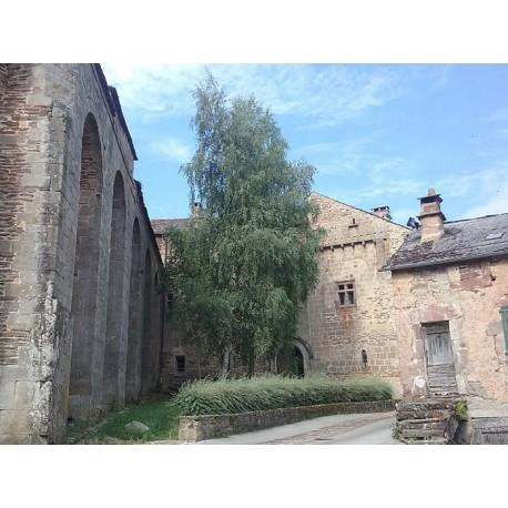 Монастырь  Сен-Мишель в Кастельно-Пегероль (Prieuré Saint-Michel de Castelnau-Pégayrols)