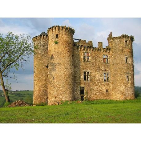 Замок Пагакс  (Château de Pagax)