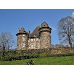 Замок Сельв  (Château de Selves)