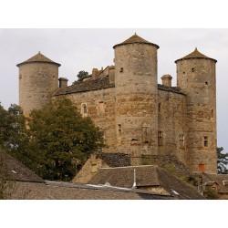 Замок Лупьяк  (Château de Loupiac)