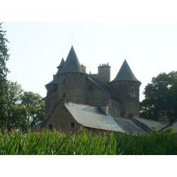 Замок Планез  (Château de Planèzes)