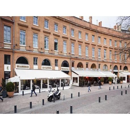 Отель Novotel Toulouse Centre Wilson 4*