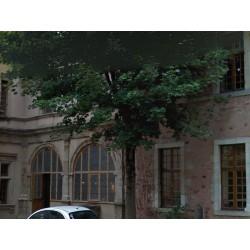 Дом священников  Родеза  (Presbytère  à Rodez)