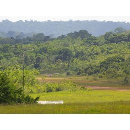 Амазонский парк Гвианы (Parc amazonien de Guyane)