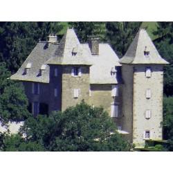 Замок Вензак (Château de Venzac)