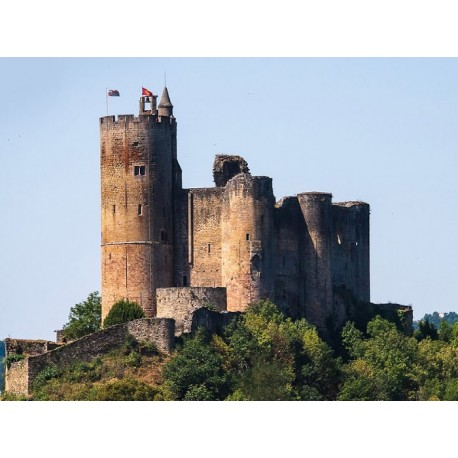 Замок Нажак (Château de Najac)