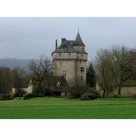Замок Маринеск (Château de Marinesque)