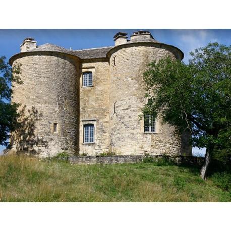 Замок Крюэжуль (Château de Cruéjouls)