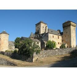 Замок Галиньер (Château de Galinières)