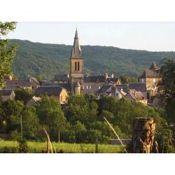 Церковь Святого Петра в Пьерфиш (Église Saint-Pierre de Pierrefiche)