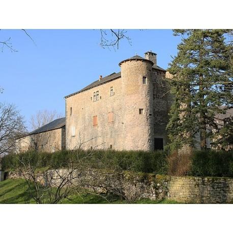 Замок Межанель (Château du Méjanel)